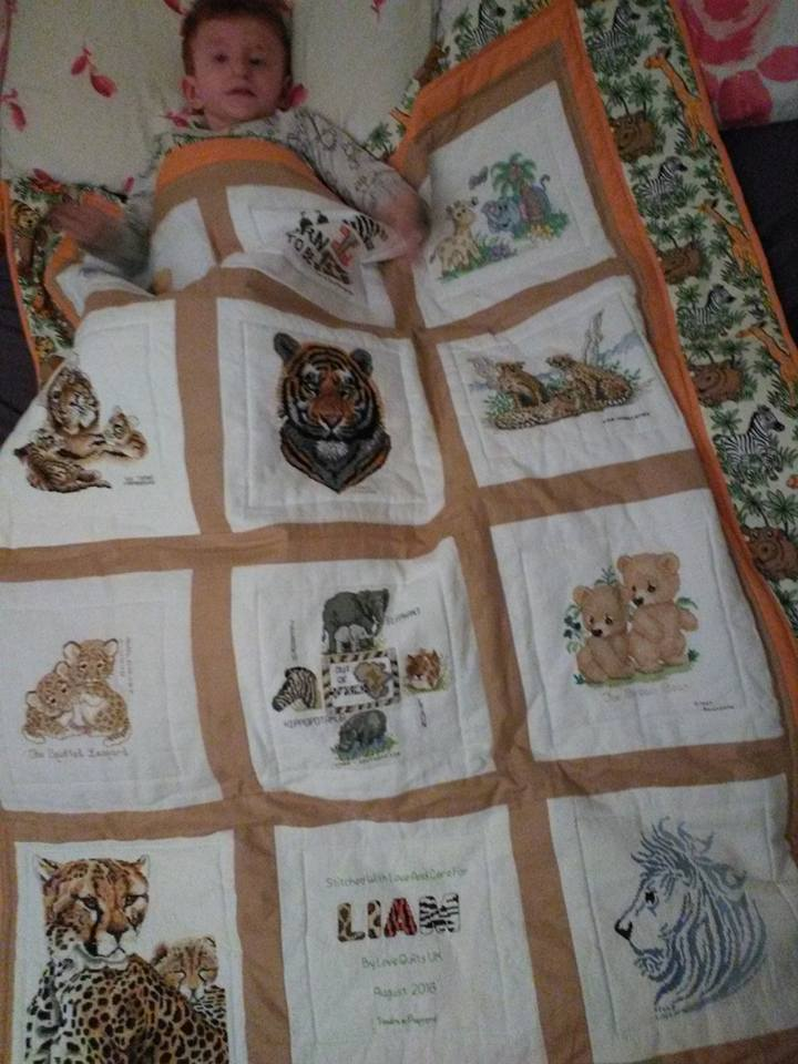 Photo of Liam P's quilt