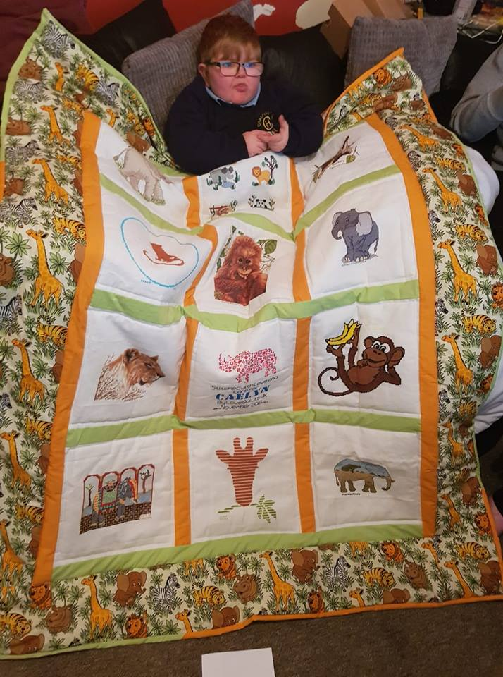 Photo of Caelyn T's quilt