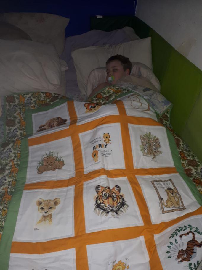 Photo of Harry P's quilt