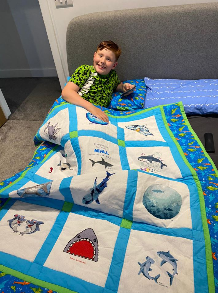 Photo of Niall B's quilt