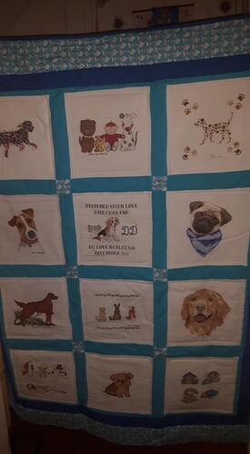 Photo of DDs quilt