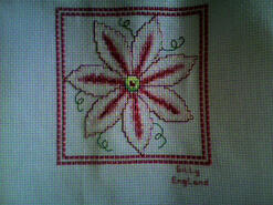 Cross stitch square for Amina Q's quilt