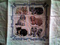 Cross stitch square for Zoe T's quilt