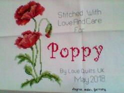 Cross stitch square for Poppy I's quilt