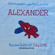 Cross stitch square for Alexander's quilt