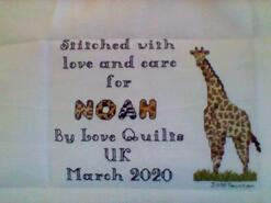 Cross stitch square for Noah D's quilt