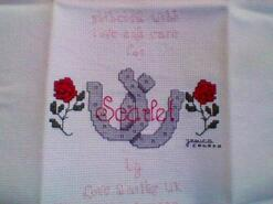 Cross stitch square for Scarlet W's quilt