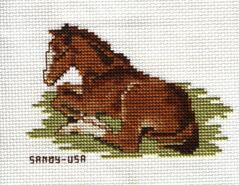 Cross stitch square for Anna-Mae's quilt